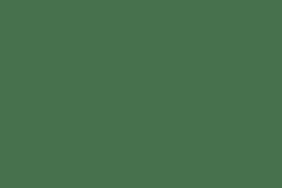 Woodstock Black 10pk Cans